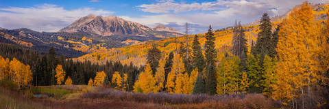 Autumn, Beckwith Mountain, CO, Colorado, Colorado Fall Color, Crested Butte, Crested Butte Fall Color, East Beckwith, East Beckwith Mountain, Elk Mountains, Fall, Fall Color, Kebler Pass, Pano, Panora