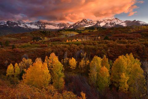 Fall Color in Colorado