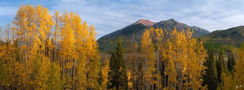 Aspens, Autumn, Avery Peak, CO, Colorado, Fall, Fall Color, Gothic, Mountain, Pano, Panorama, Panoramic, Trees