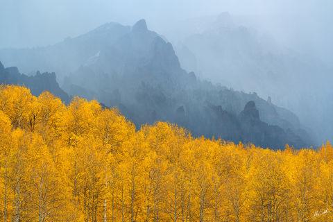 Aspen Trees, Aspens, Autumn, CO, Colorado, Colorado Fall Color, Fall, Fall Color, Fall color in Colorado, Foreboding, Populus tremuloides, Rocky Mountains, San Juan Mountains, Sheep Mountain, Storm