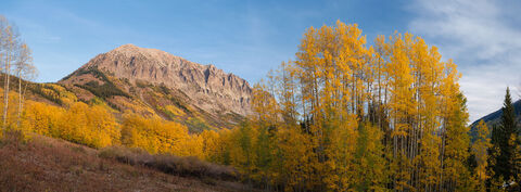 Aspens, Autumn, CO, Colorado, Fall, Fall Color, Gothic, Mountain, Pano, Panorama, Panoramic, Trees