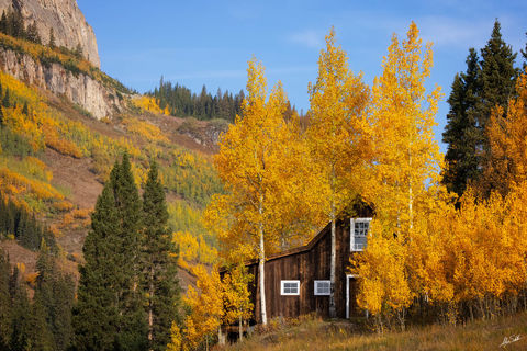 Aspens, Autumn, CO, Cabin, Colorado, Fall, Foliage, Gothic, Log cabin, Rustic, Trees