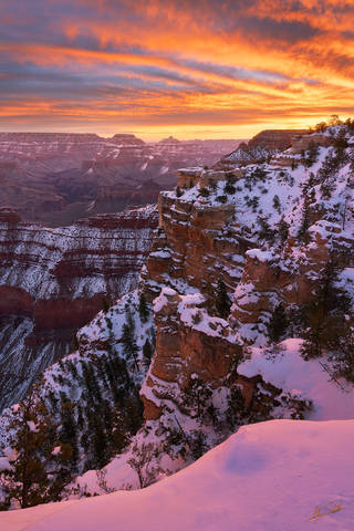 Happy Birthday Grand Canyon National Park!