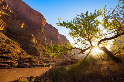 Arizona, Below the Rim, Colorado River, Conquistador Aisle, Grand Canyon, National Park, River Trip, Tapeats Ledges