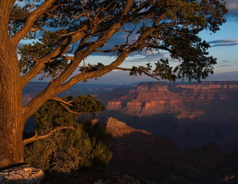 Arizona, Desert View, Grand Canyon, South Rim, National Park