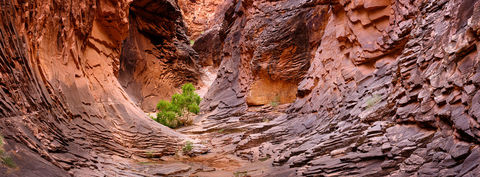 AZ, Arizona, Below the Rim, Expedition, FujiFilm, GFX, GFX 100, Grand Canyon, National Park, North Canyon, River Trip