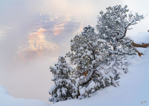 AZ, Arizona, Grand Canyon, Grand Canyon National Park, National Park, Snow, Snow at the Grand Canyon, South Rim, South Rim of the Grand Canyon, Southwest, Winter, Winter at the Grand Canyon