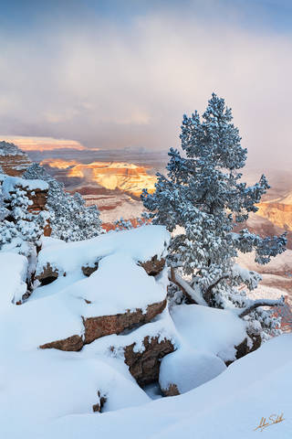 American Southwest, Arizona, Colorado Plateau, Grand Canyon, National Park, Rim Trail, Snow, South Rim, Southwest