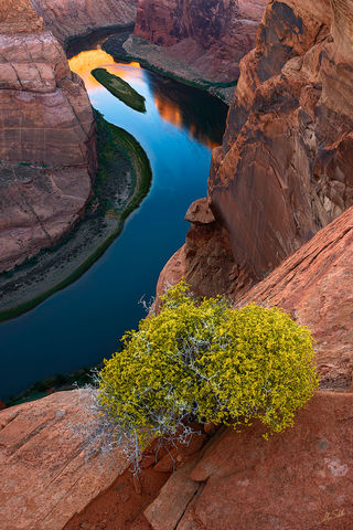 American West, Arizona, Canyon, Colorado River, Horseshoe Bend, Page