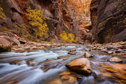 Grand Canyon, National Park, River, The Narrows, UT, Virgin River, Water, Zion, narrows