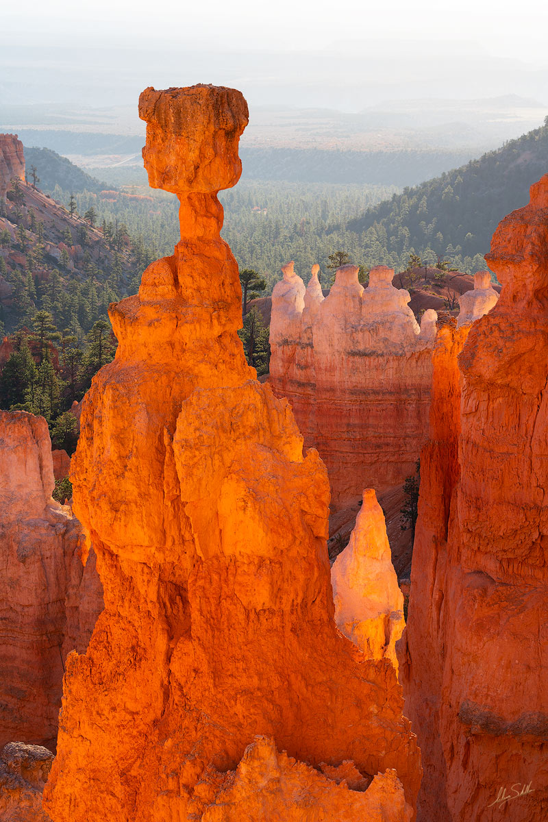 Early morning light reflects off the surrounding cliffs and onto Thors Hammer. Bryce Canyon National Park in southern Utah. Photo...