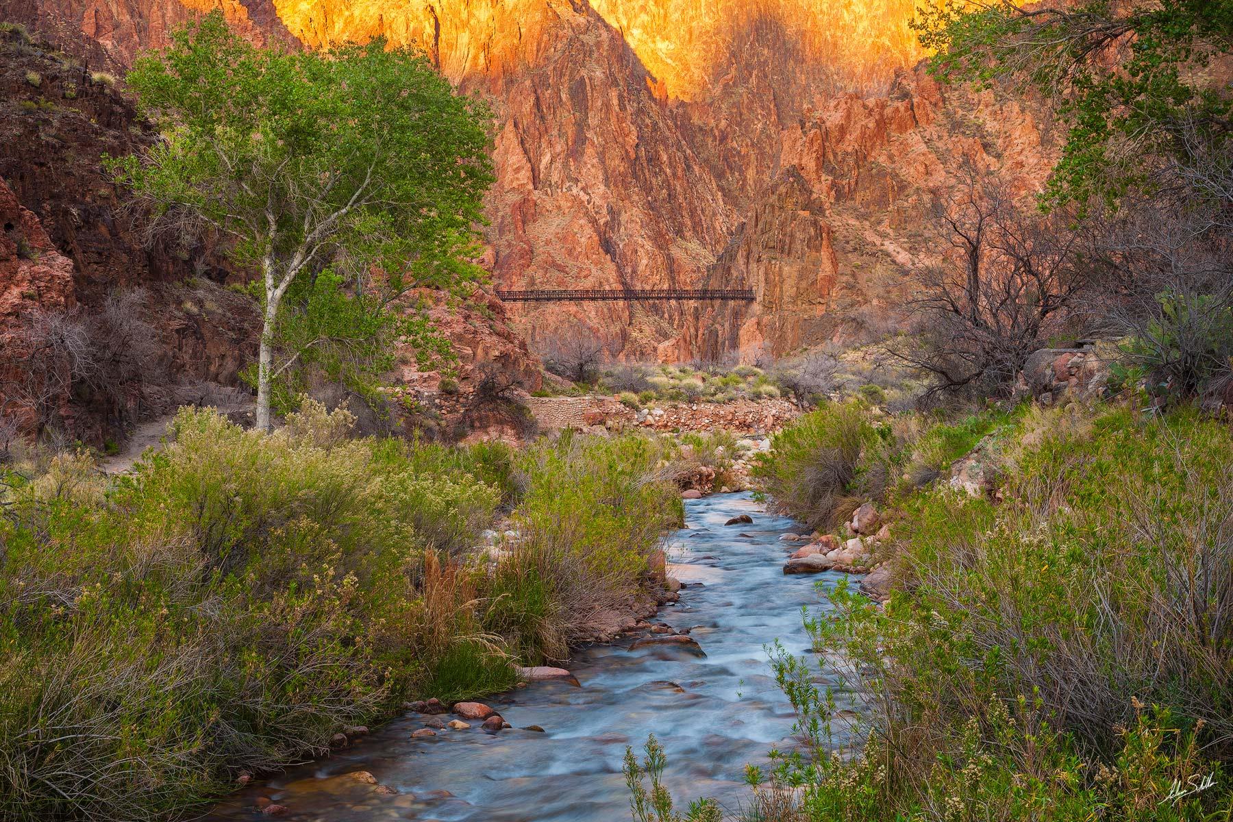 Arizona, Below the Rim, Colorado River, Grand Canyon, National Park, Bright Angel Creek, Phantom Ranch, Black Bridge, South Kaibab Trail, photo