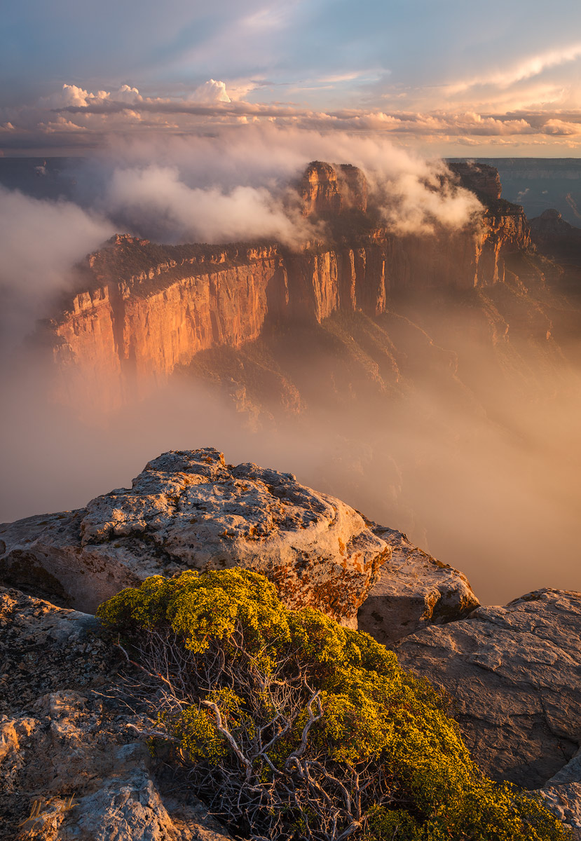 Cape Royal, Grand Canyon, Monsoon, National Park, North Rim, Wotans Throne, Wind, Fog, Atmosphere, photo