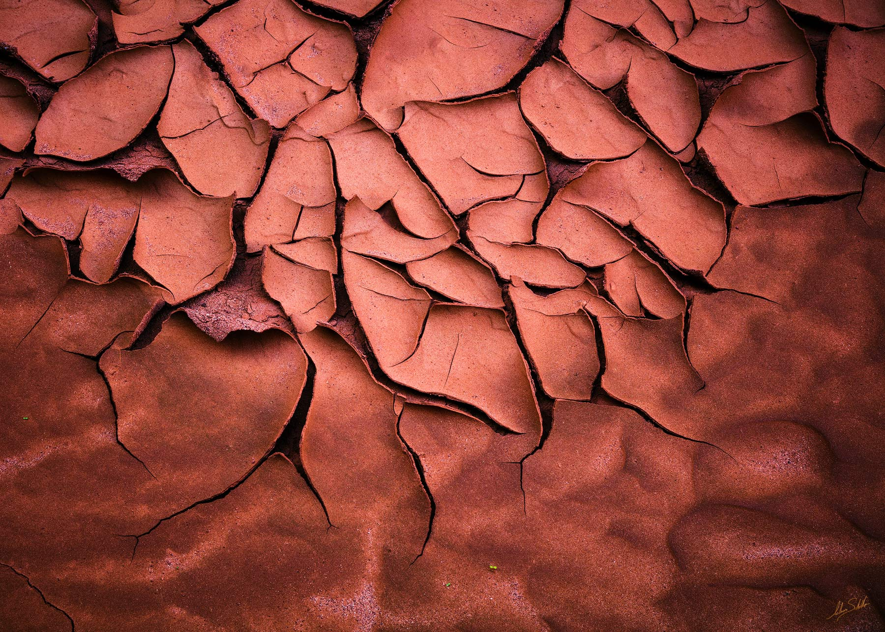 Cracked, Mud, Earth, North Canyon, Grand Canyon, Marble Canyon, Pattern, Abstract, photo