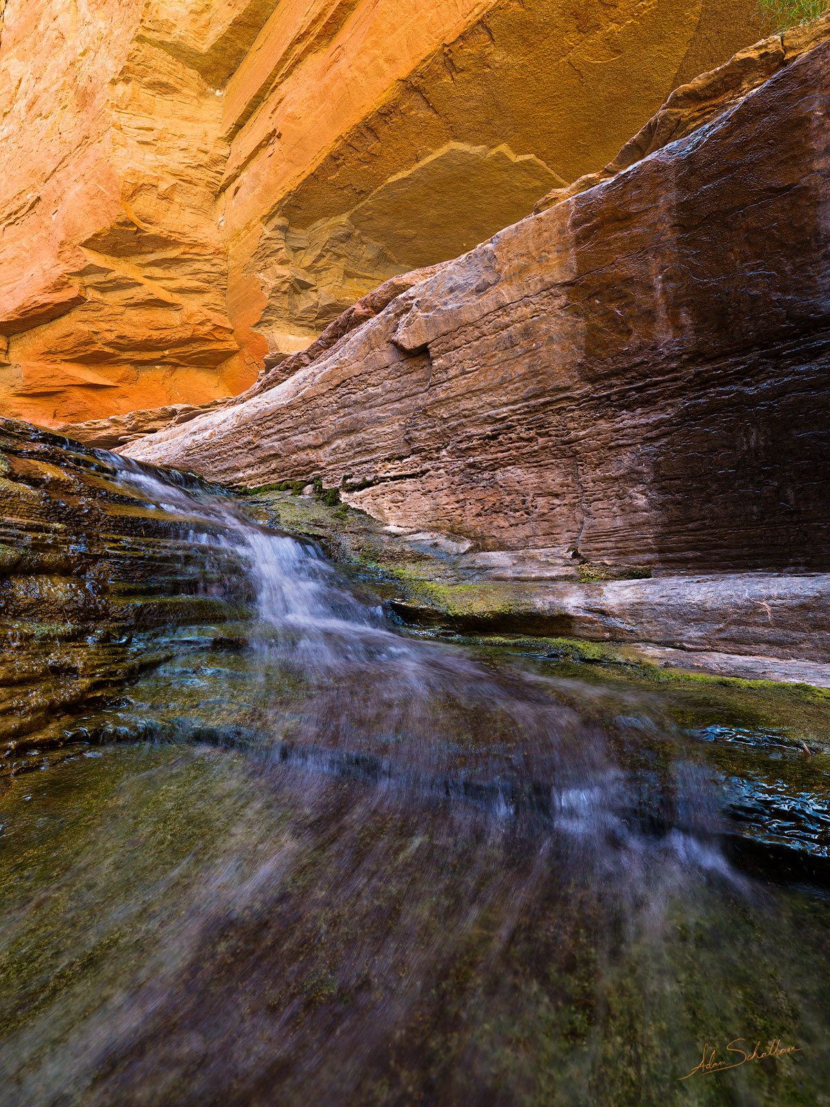 A waterfall in Matkatamiba Canyon, a side canyon to the Colorado River in Grand Canyon National Park.