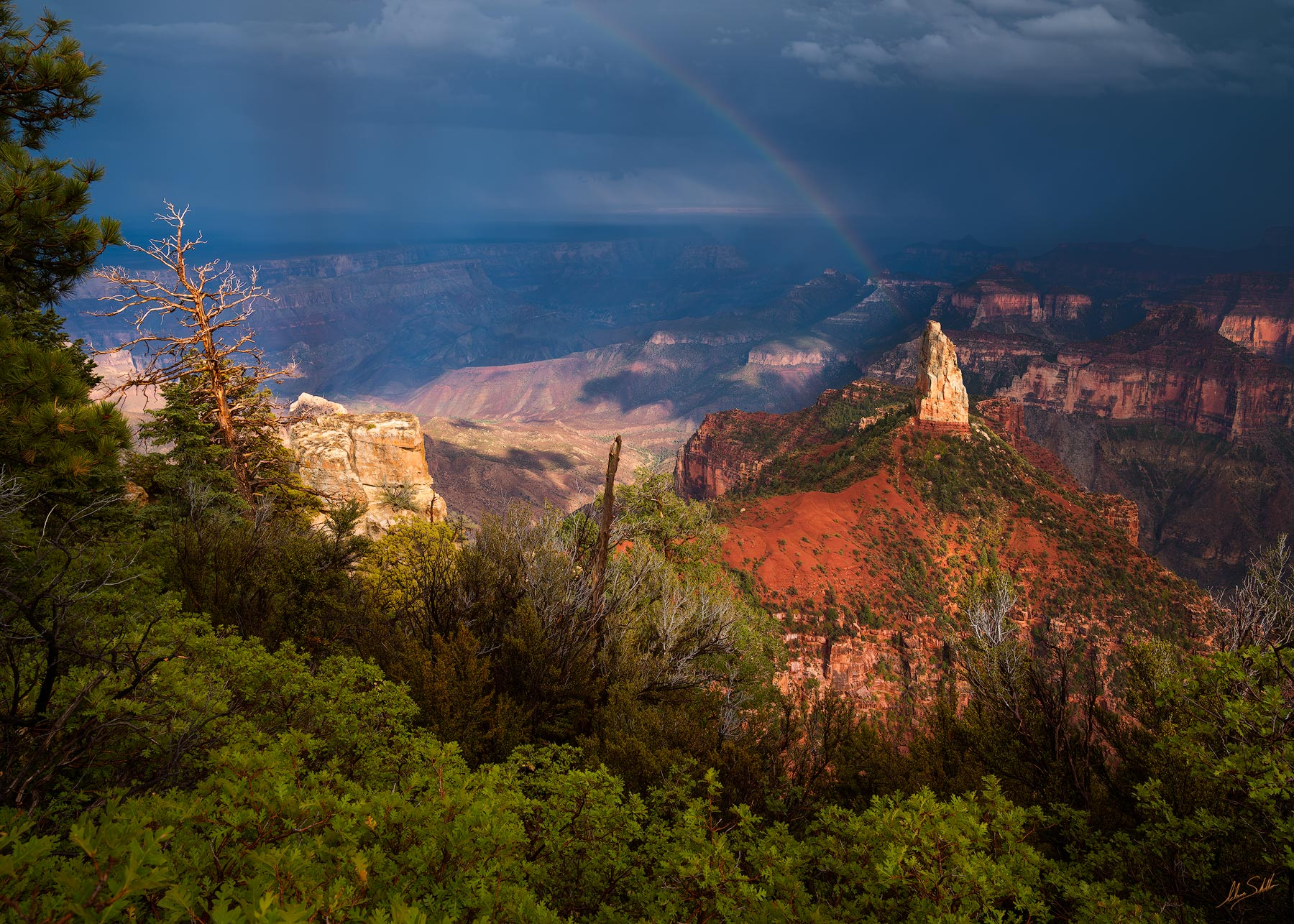 Arizona, Colorado Plateau, Grand Canyon, Monsoon, Mount Hayden, National Park, North Rim, Point Imperial, Rainbow, photo