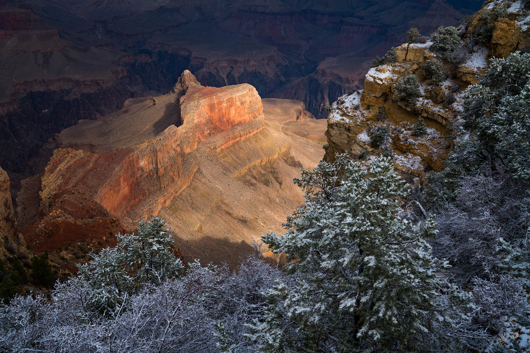 AZ, Arizona, Dana Butte, Grand Canyon, Grand Canyon National Park, National Park, Powell Point, South Rim, South Rim of the Grand Canyon, Winter, Winter at the Grand Canyon, photo