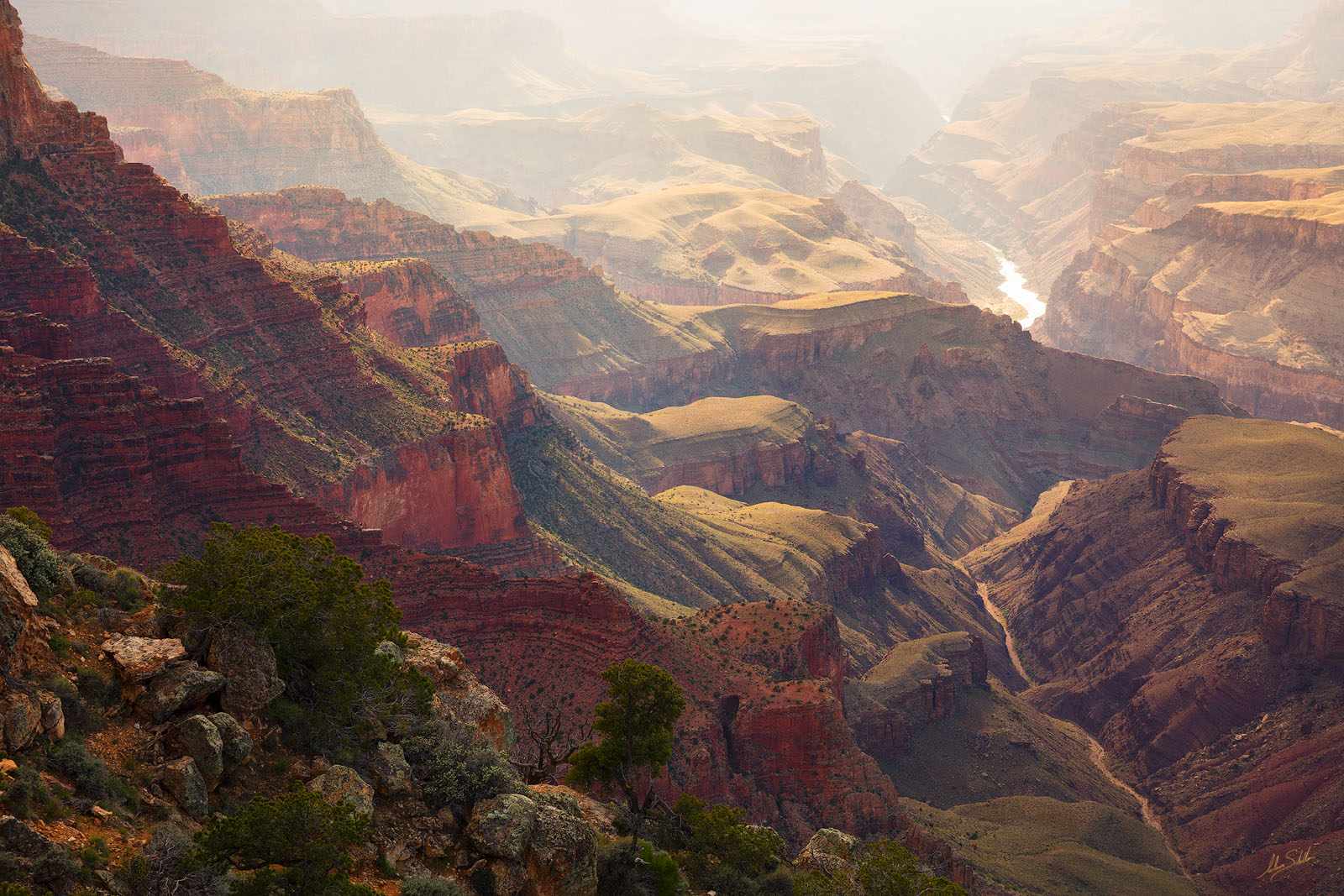 The Colorado River basks in the warm afternoon light. From the South Rim of Grand Canyon National Park near Lipan Point. Photo...