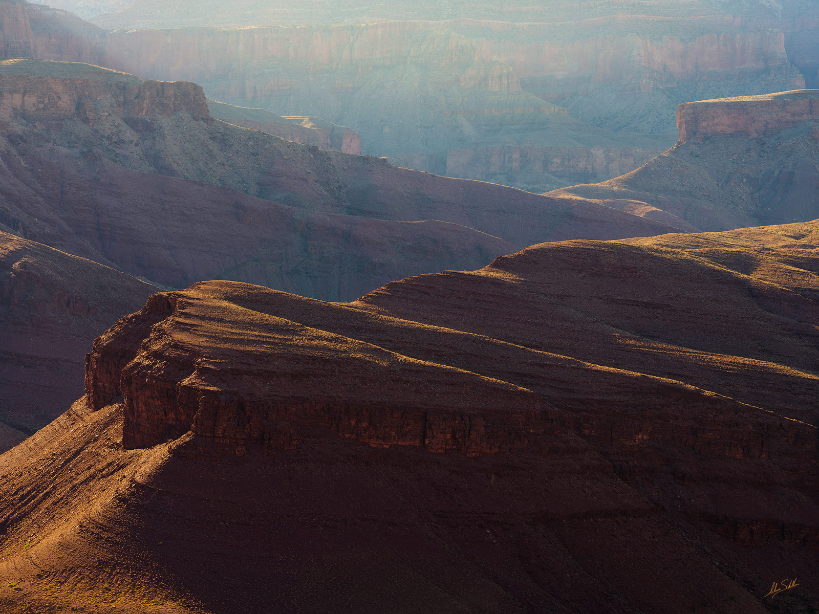 Late afternoon light glances across the rolling terrain above Unkar Creek in Grand Canyon National Park.