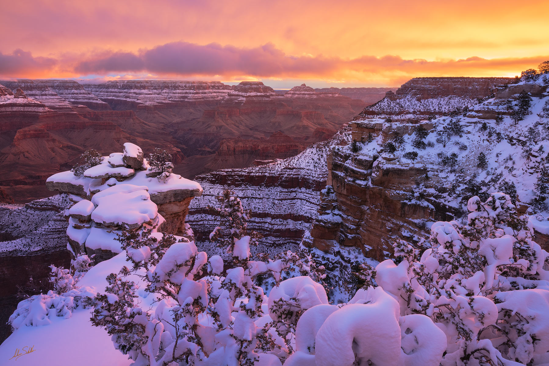 AZ, Arizona, Grand Canyon, Grand Canyon National Park, Snow, Snow at the Grand Canyon, South Rim, South Rim of the Grand Canyon, Sunrise, Sunrise at the Grand Canyon, Winter, Winter at the Grand Canyo, photo
