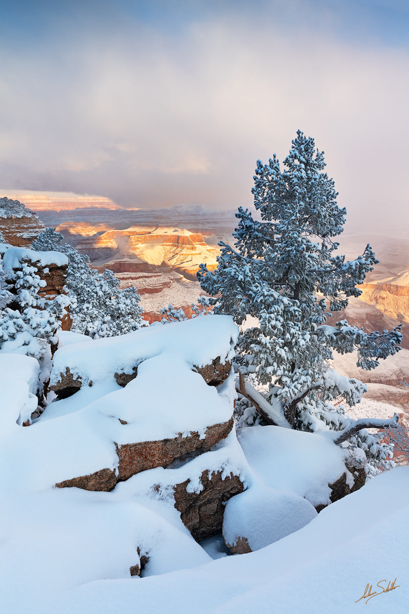 American Southwest, Arizona, Colorado Plateau, Grand Canyon, National Park, Rim Trail, Snow, South Rim, Southwest, photo