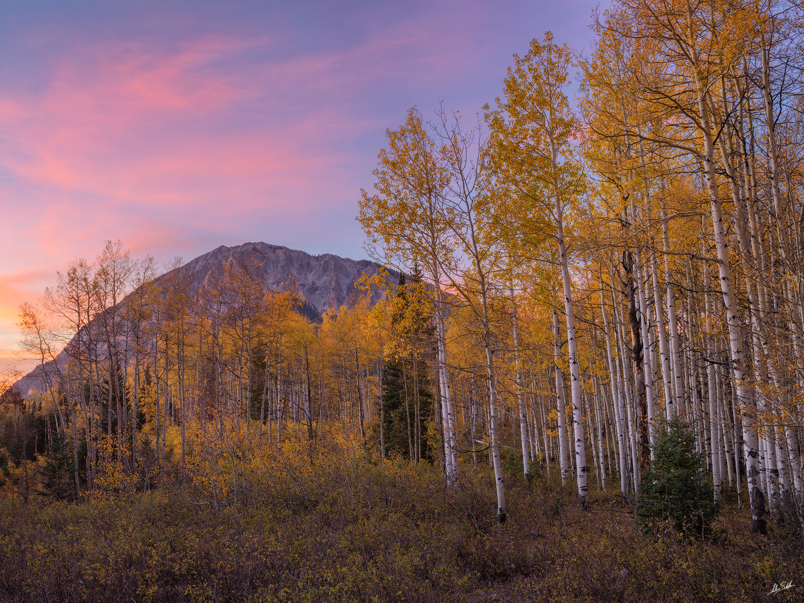 A colorful fall sunset over Marcellina Mountain and the tall aspen trees along Kebler Pass. Near Crested Butte. Colorado. ©...