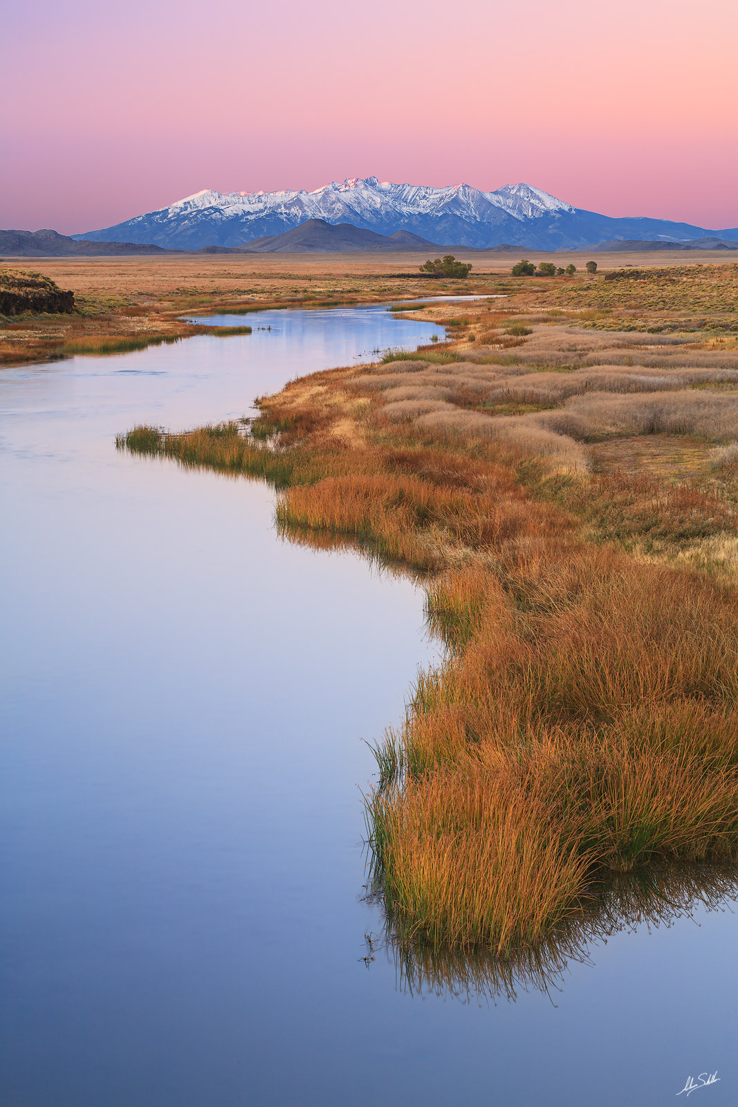 Blanca, Blanca Massif, CO, Colorado, Mountains, Rio Grande, Riparian, River, San Luis Valley, Sangre de Cristo, Wild Grasses, grass, grasses, photo