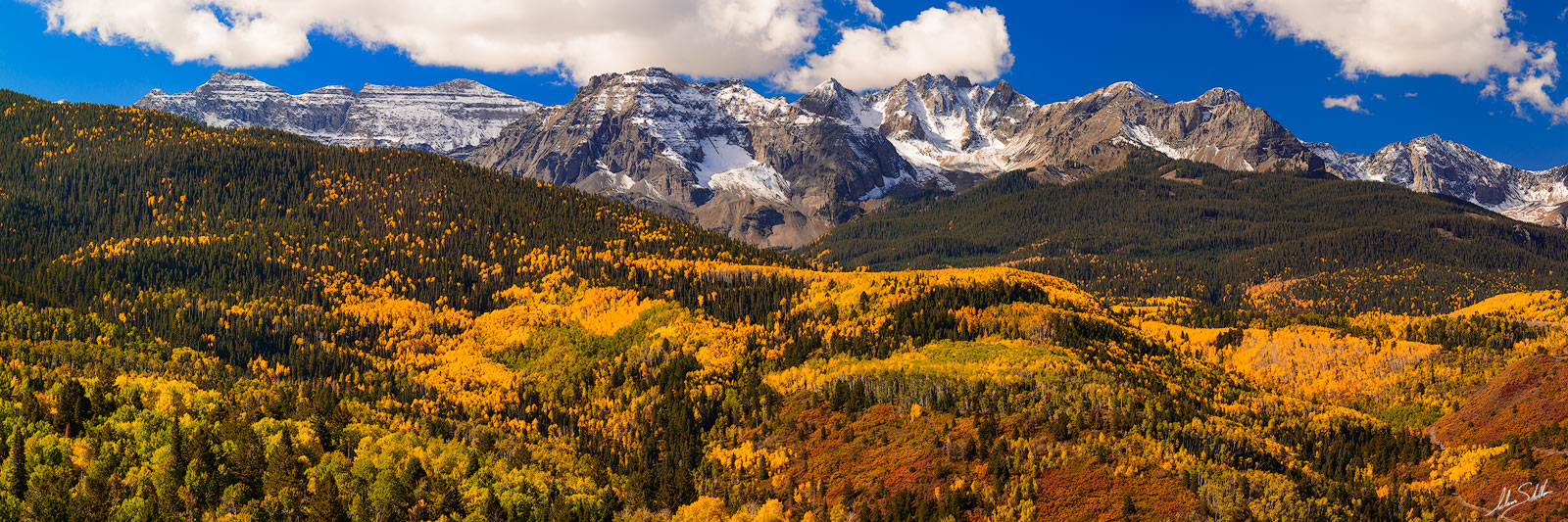 Aspen Trees, Aspens, Autumn, Colorado, Fall, Fall Color, Pano, San Juan Mountains, photo