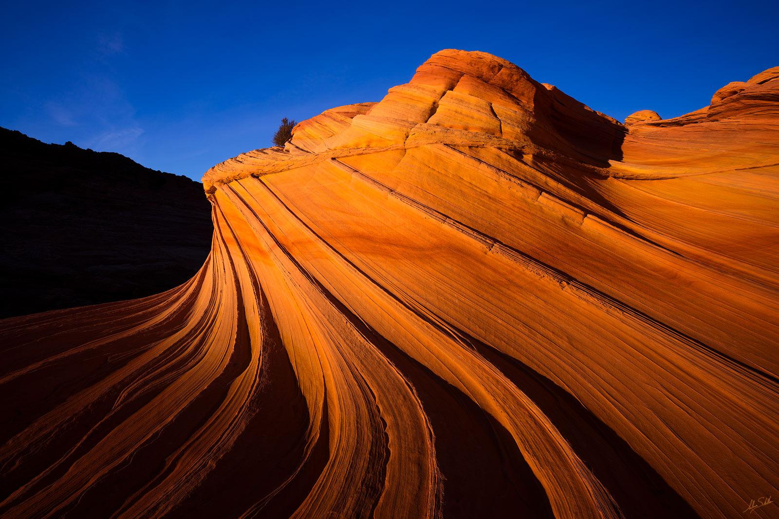 American Southwest, AZ, Arizona, Arizona Strip, Black & White, Coyote Buttes, Coyote Buttes North, Erosion, Geology, National Monument, Northern Arizona, Sandstone, Second Wave, Southwest, The Wave, V, photo