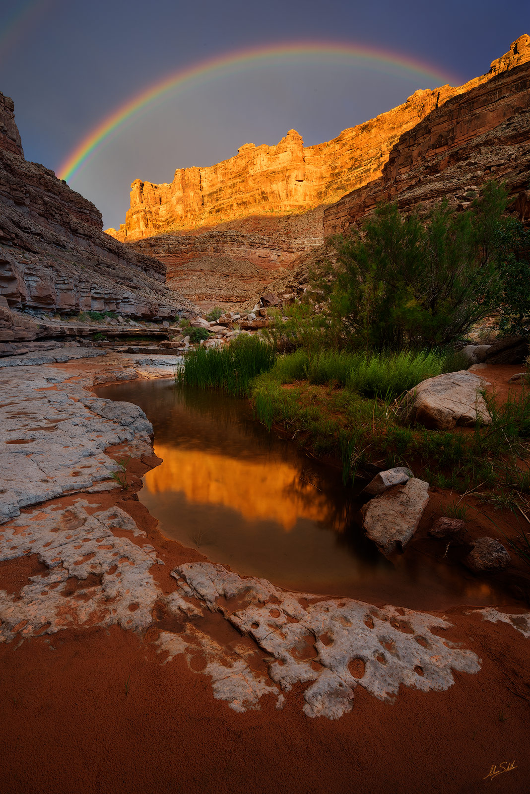 Bears Ears, Bears Ears National Monument, Canyon Country, Cedar Mesa, Pool, Rainbow, Red Rock, Reflection, San Juan River, Slickhorn Canyon, Solitude, Water, Utah, photo