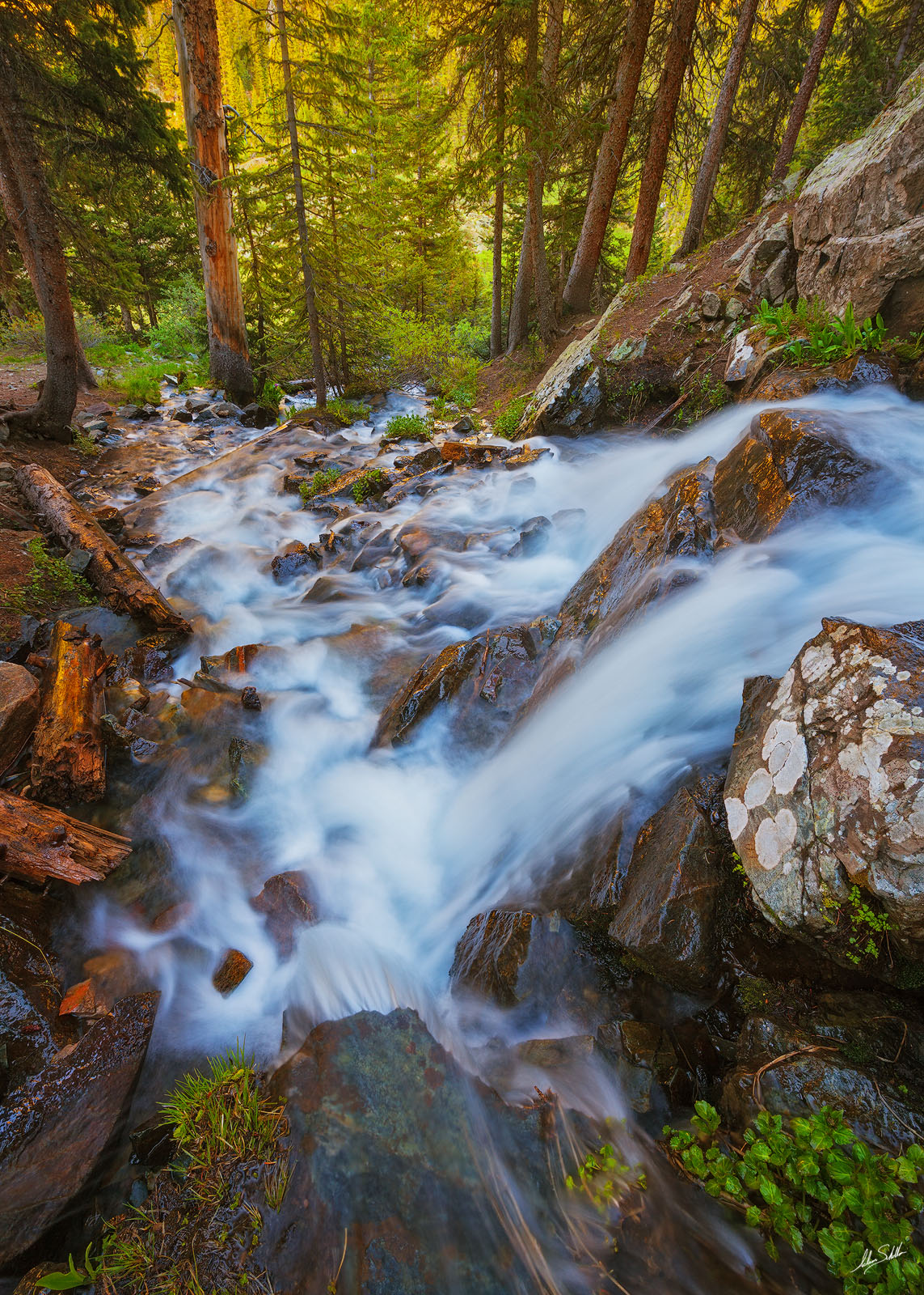 A waterfall in the Wheeler Peak Wilderness near Taos, New Mexico, © Adam Schallau, All Rights Reserved.