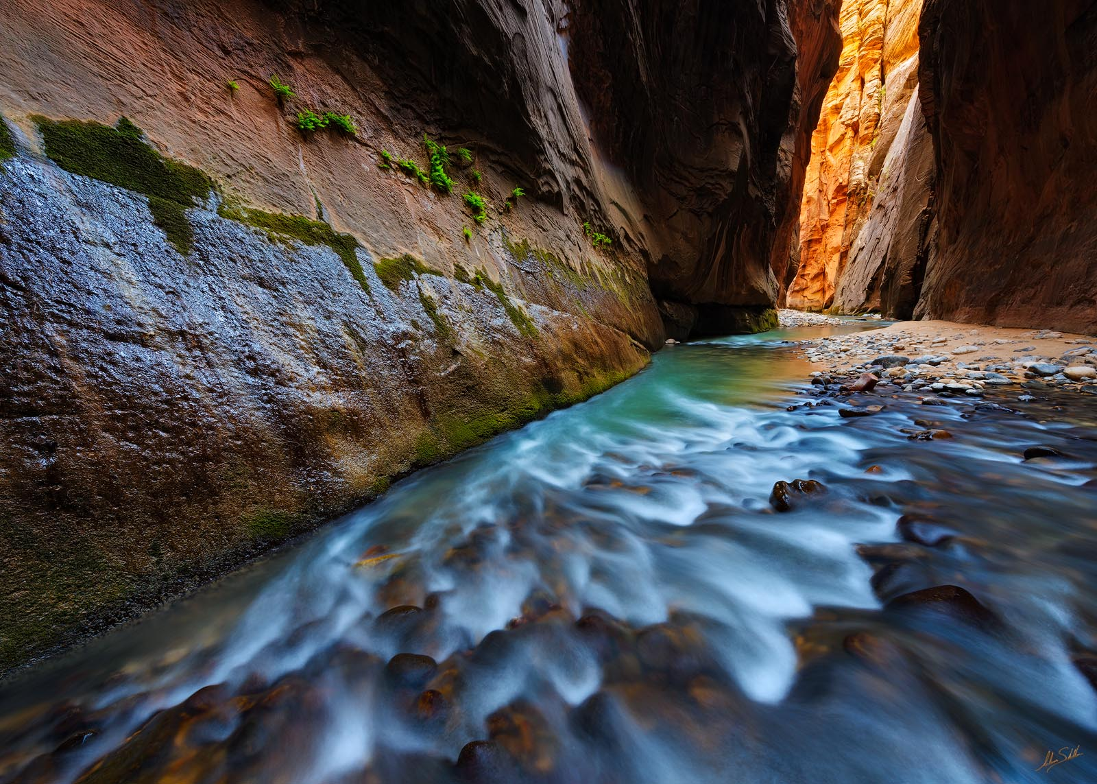River, Utah, Virgin River, Virgin River Narrows, Water, Zion, Zion National Park, narrows, photo